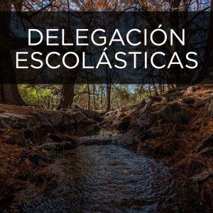 DELEGACIÓN ESCOLASTICAS Municipio Pedro Escobedo