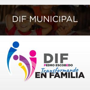 DIF Municipio Pedro Escobedo