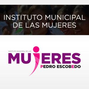 IMM Municipio Pedro Escobedo