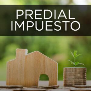 Predial Impuesto Municipio Pedro Escobedo