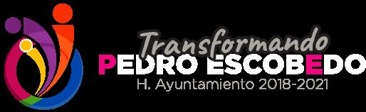 Municipio Pedro Escobedo